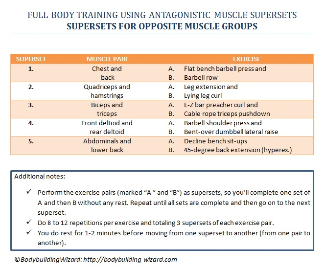 supersets for the opposing muscle groups
