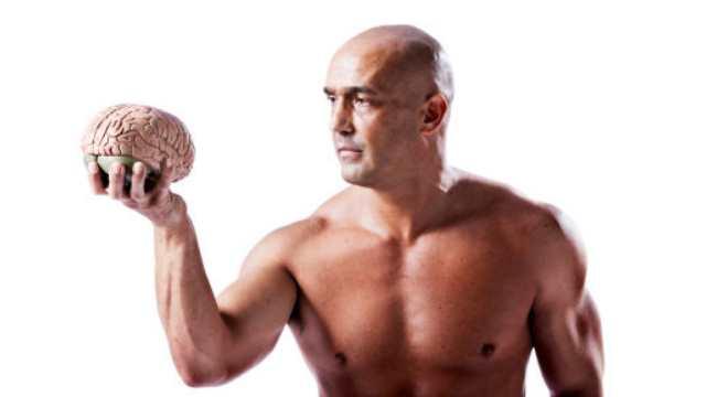 Understanding muscle memory