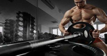 Barbells - strength training equipment