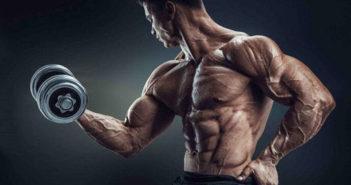Dumbbells - weight training equipment