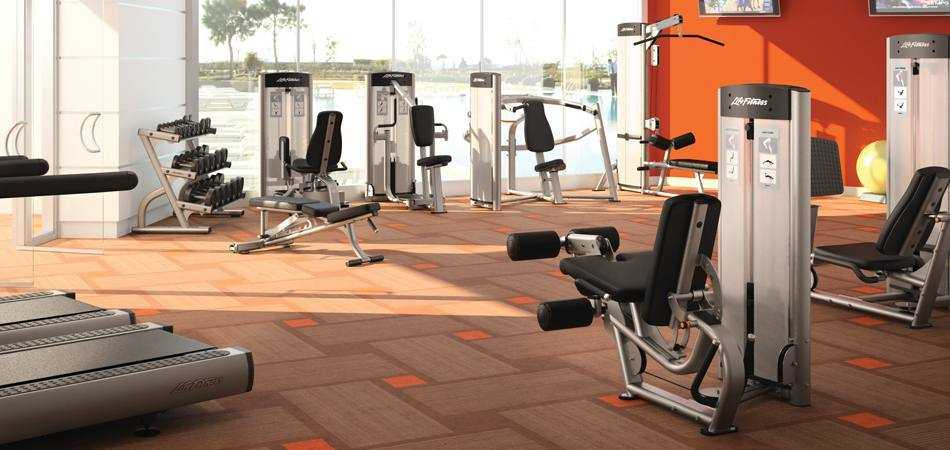 Selectorized and plate loaded strength training machines