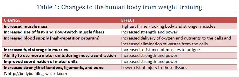 Table 1: Changes to the human body from weight training