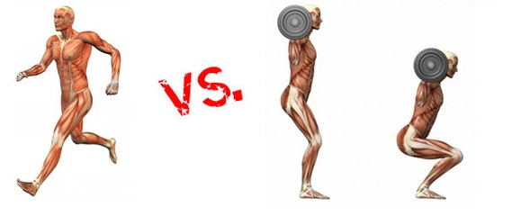 Cardio vs Weight Training for Fat Loss