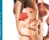 Serratus Anterior Muscle: Functional Anatomy Guide