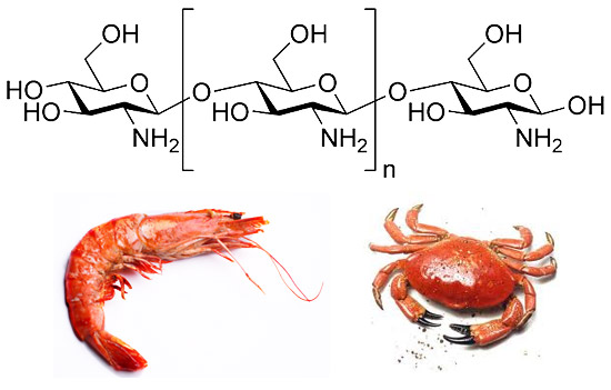 What is Chitosan?