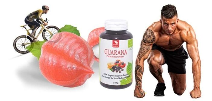 Guarana: benefits, dosage, and side effects