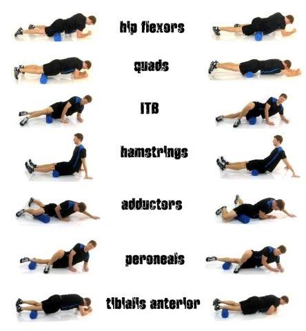 Foam roller basic exercises