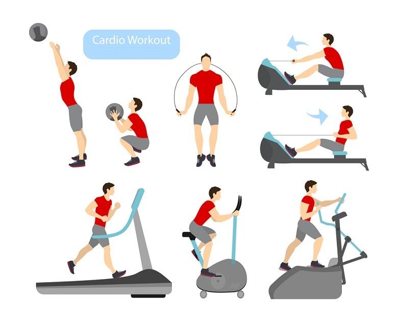 Basics of Cardiovascular Training