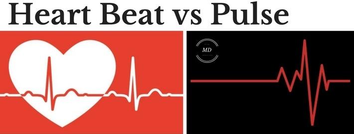 heart beat vs pulse
