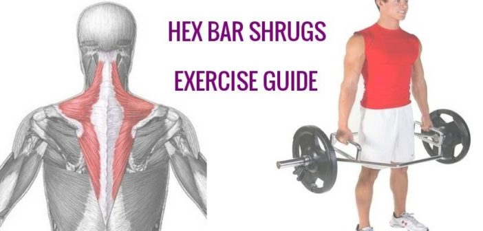 trap bar shrug exercise instructions