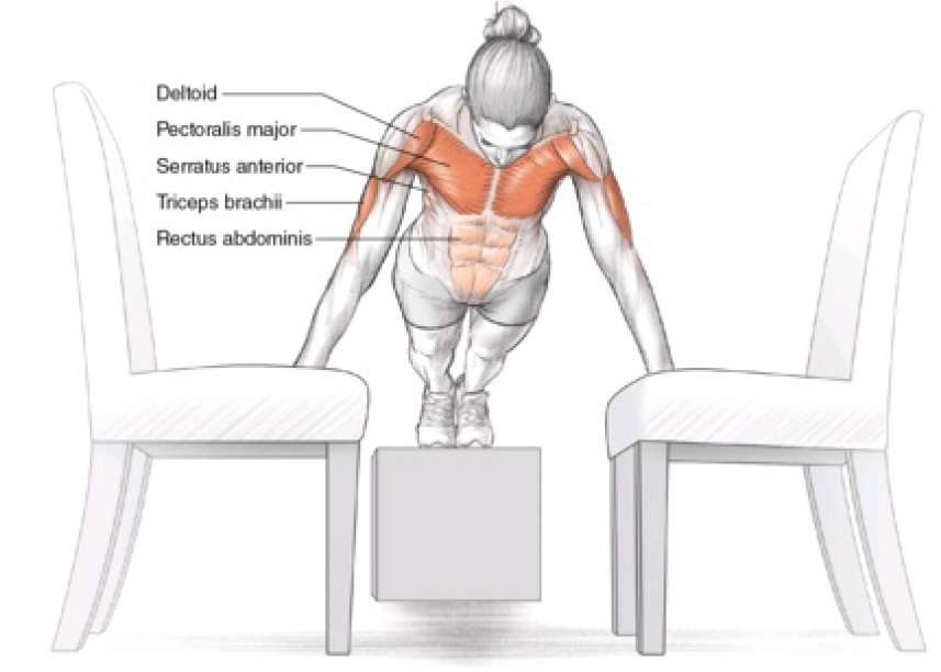 Push-ups between two chairs