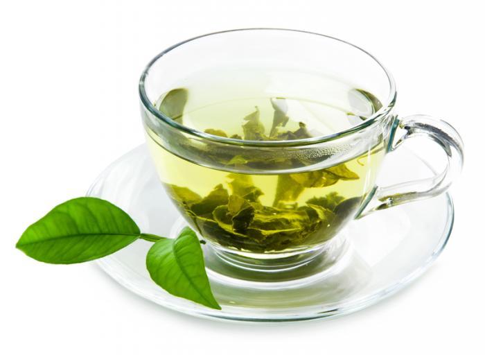 green tea extract thermogenic-ingredient