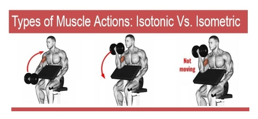 isometric vs isotonic