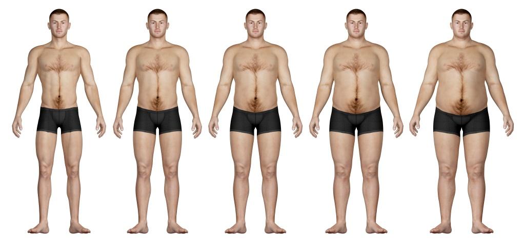 lean body mass percentage