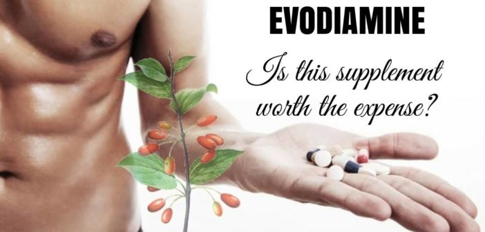 Evodiamine (evodia) as a weight loss supplement