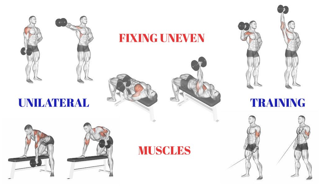 fixing uneven muscles unilateral training