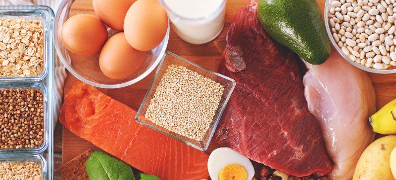 best protein source: foods rich in protein