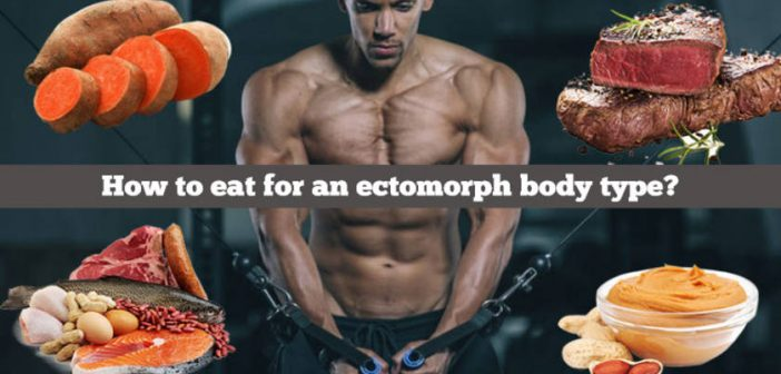 Ectomorph diet