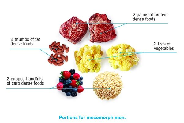 typical mesomorph meal