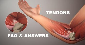 tendons: 12 FAQ and answers