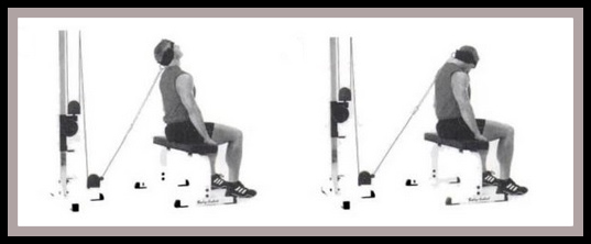 cable neck flexion exercise