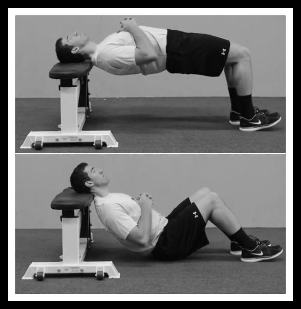 neck bridge exercise using bench