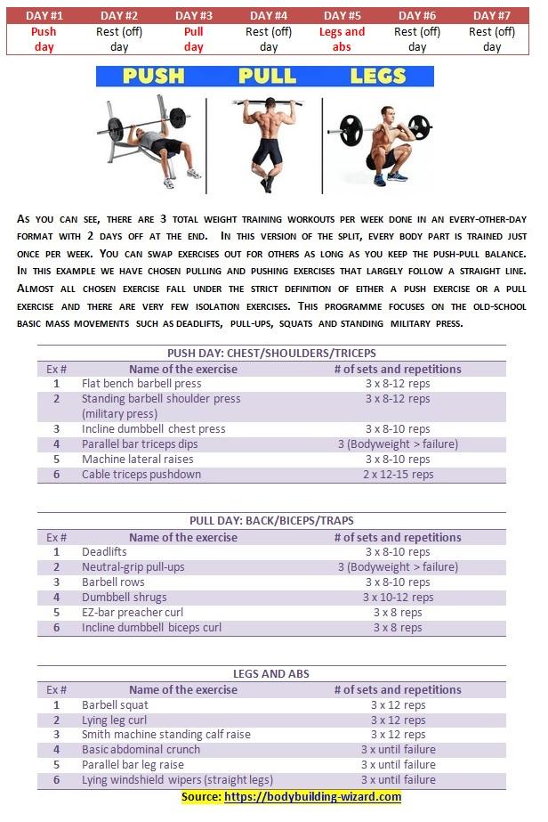 push-pull-legs split routine programme