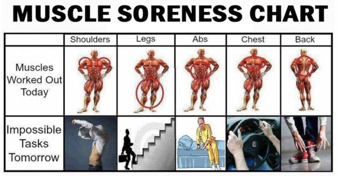 الفرق بين ألم العضلات أثناء التمرين