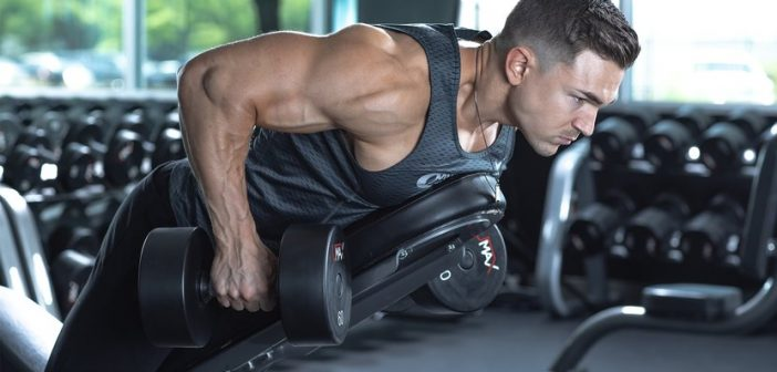 Chest-supported dumbbell rows
