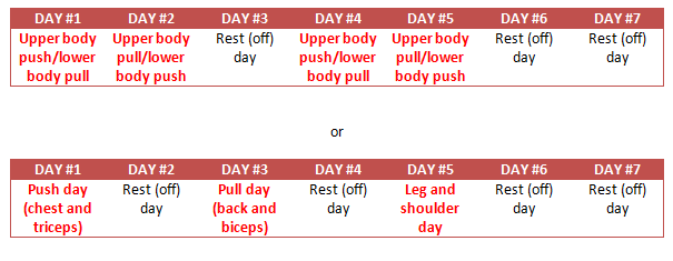 Push & Pull Split Routine