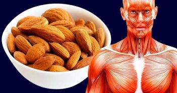 almonds and muscle building