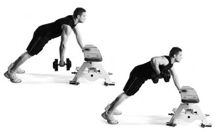 modified renegade row exercise