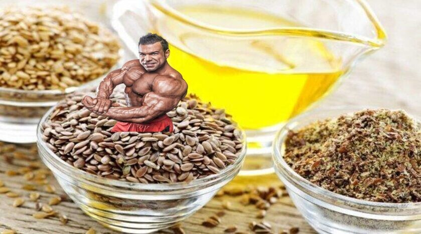 flaxseeds and flaxseed oil in bodybuilding diet