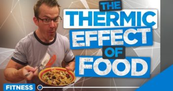 thermic effect of food - TEF