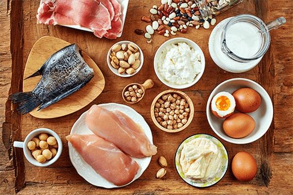 anabolic foods: positive nitrogen balance