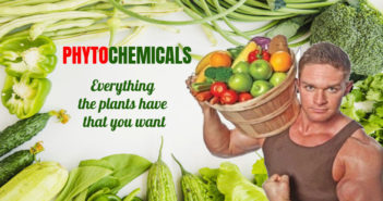 Phytochemicals: Types, Food Sources and Health Benefits