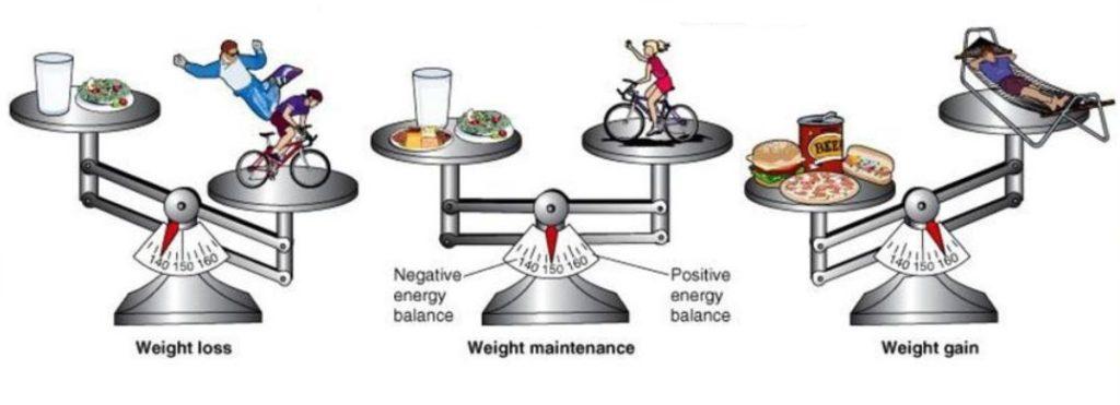 weight loss, weight gain, weight maintenance
