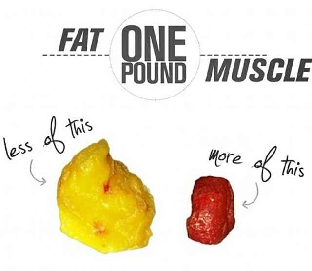 1 pound of fat equals 3500 calories