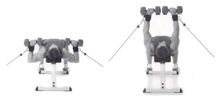 dumbbell cable press exercise