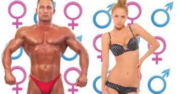 anatomical variations between male and female bodies