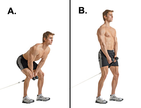 cable pull-through exercise