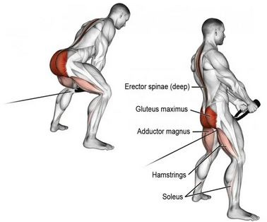 muscle activation: glute pull-through