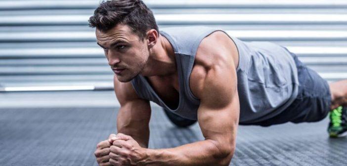 How Muscles Increase Their Endurance?