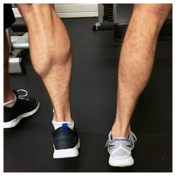 role of genetics in the development of calf muscles