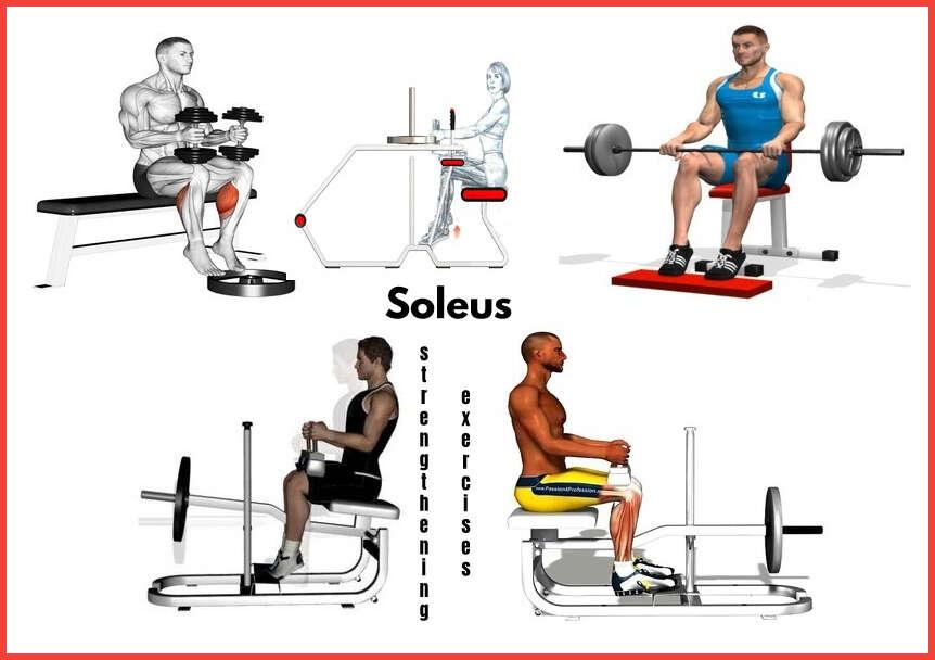 soleus strengthening exercises